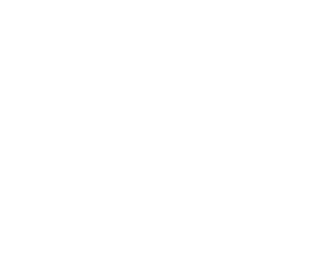 bridgewater-university-logo-wh